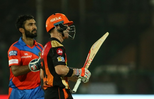 David Warner and Dinesh Karthik